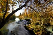 Picture of Tarsus Autumn Colors