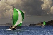 Picture of Sailing Boats 11