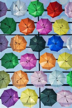 Picture of Umbrellas