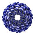 Resim Mush Series Blue 03