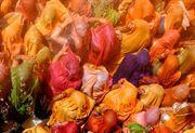 Resim Renkler ve Gölgeler 08