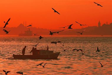 Picture of Red İstanbul