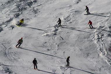 Picture of Ski